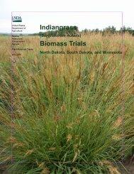 (Sorghastrum nutans) Biomass Trials - Plant Materials Program - US ...