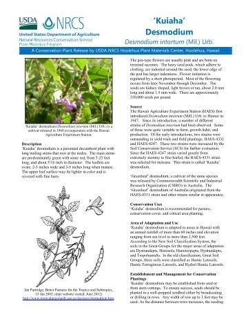 Desmodium intortum - Plant Materials Program