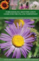 Forb Seedling Identification Guide for the Inland Northwest