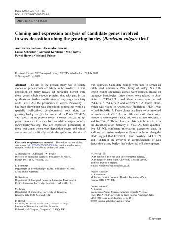Cloning and expression analysis of candidate genes involved in wax ...