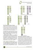 Download PDF - Planteforskning - Page 6