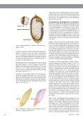 Download PDF - Planteforskning - Page 3