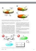 Download PDF - Planteforskning - Page 4