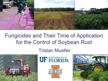 Fungicides and Their Time of Application for Control of Soybean Rust.