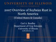 2007 Overview of Soybean Rust in North America - Plant ...