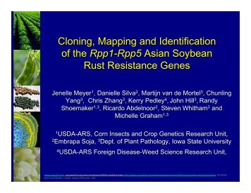 Cloning, Mapping and Identification of Rpp Genes - Plant ...