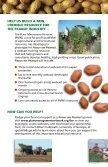 Focus on Peanut - Plant Management Network - Page 2