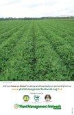 Focus on Peanut - Plant Management Network - Page 4