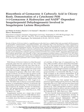 Biosynthesis of Germacrene A Carboxylic Acid in ... - Plant Physiology