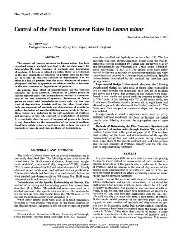 Control of the Protein Turnover Rates in Lemna ... - Plant Physiology