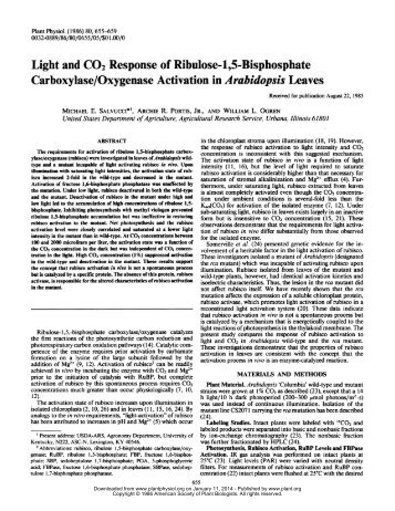 Light and CO2 Response of Ribulose-1,5 ... - Plant Physiology