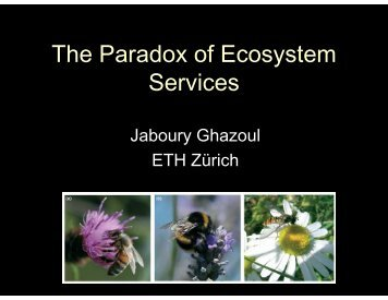 The Paradox of Ecosystem Services