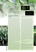 Newsletter 19, Spring 2011 (PDF 2.4 MB) - Zurich-Basel Plant ... - Page 2