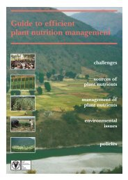 Guide to efficient plant nutrition management - FAO.org