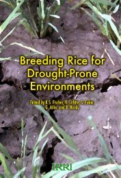 Breeding Rice for Drought-Prone Environments - Rice Knowledge ...