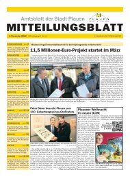 Download (*.pdf, 13642 KB) - Stadt Plauen