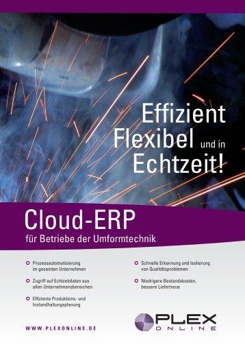 Cloud-ERP Effizient Flexibel und in Echtzeit! - Plex Systems