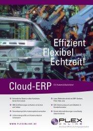 Effizient Flexibel und in Echtzeit! - Plex Systems