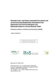 Energiekonzept für die Region Trier, Abschlussbericht 2010
