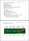 Biofilme - Seite 3