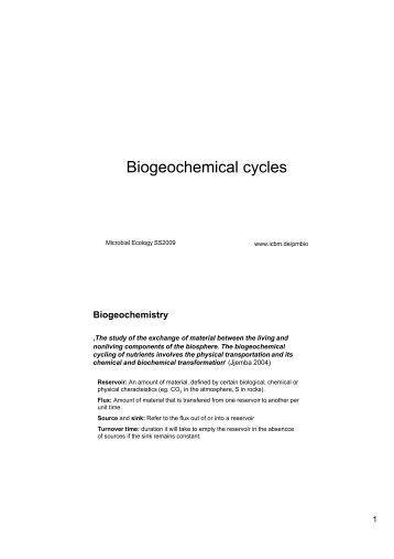 5. write a detailed essay on biogeochemical cycles