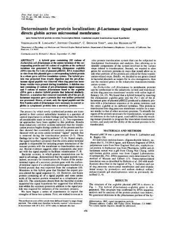 Determinants for protein localization: /8-Lactamase signal sequence ...
