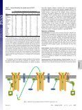 STAT3 activation in response to IL-6 is prolonged by the binding of ... - Page 5