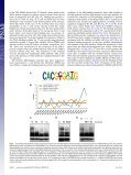 Juvenile hormone and its receptor, methoprene- tolerant, control the ... - Page 6