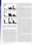 Ammonia oxidation pathways and nitrifier denitrification are ... - Page 4