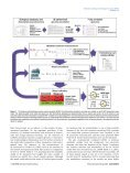Modeling methanogenesis with a genome-scale metabolic ... - Page 3