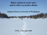 Black carbon in Arctic snow and its effect on surface albedo