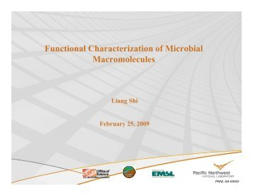 Functional Characterization of Microbial Macromolecules