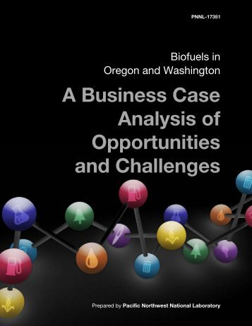 A Business Case Analysis of Opportunities and Challenges - Pacific ...