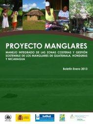 proyecto manglares - Programa de Naciones Unidas para el Medio ...
