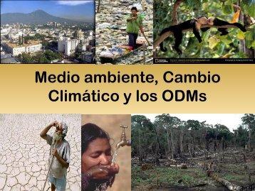 Medio ambiente y los ODMs
