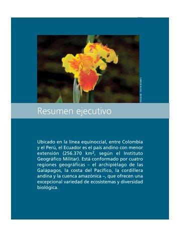 02. Resumen ejecutivo.pdf - Flacso Andes