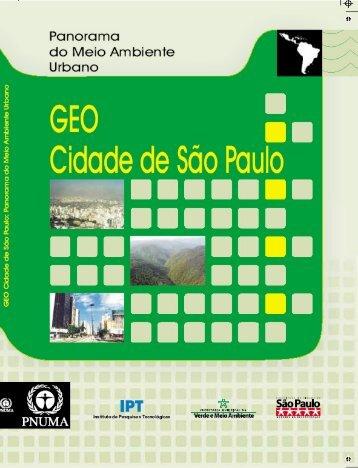 GEO Cidade de São Paulo - Programa de Naciones Unidas para el ...