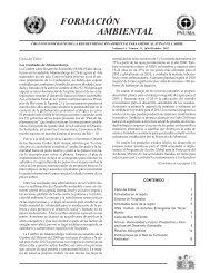 formación ambiental - Programa de Naciones Unidas para el Medio ...