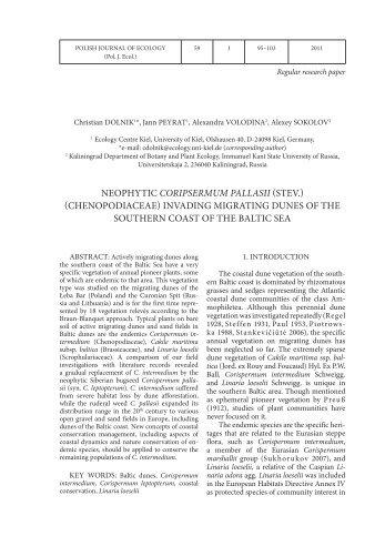 NEOPHYTIC CORIPSERMUM PALLASII (STEV ...