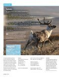 reindeer and Caribou: herds and livelihoods in TransiTion - Page 2