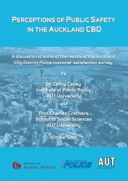 Perceptions of Public Safety in the Auckland CBD - New Zealand ...