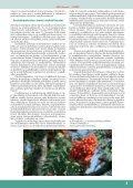 Sisällys - Poliisi - Page 5