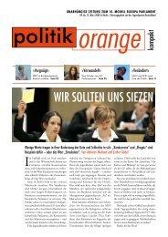 Wir sollten uns siezen - Politikorange.de