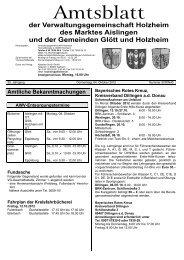 Holzheim KW 40.cdr