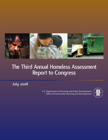 The Third Annual Homeless Assessment Report to ... - OneCPD
