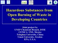Hazardous Substances from Open Burning of Waste in Developing ...