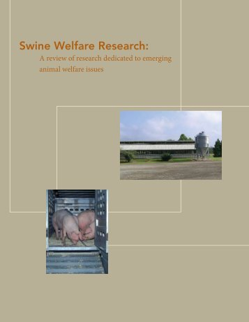 Swine Welfare Research: - National Pork Board