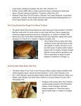 Menuing Information: Sandwiches - PorkFoodService.Com - Page 3