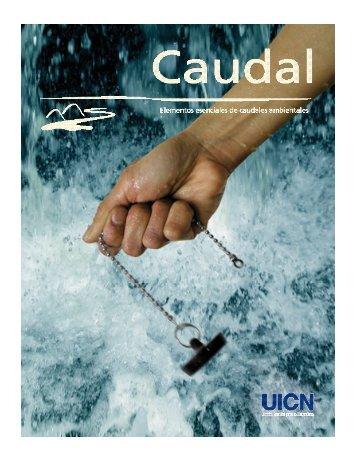 Caudal – Elementos esenciales de los caudales ambientales - IUCN