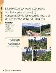 Desarrollo de un modelo de fondo ambiental para ... - Portal Cuencas